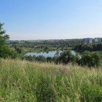 Вид на озеро :: Яна Чепик