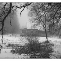 Черно белая зима :: Алексей Дмитриев