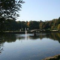 Озеро в парке Дубки :: Владимир Фролов