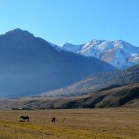 Декабрь в горах :: Marina Timoveewa