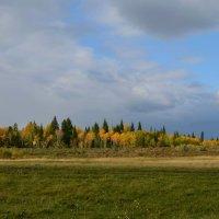 Осень :: Вера Андреева