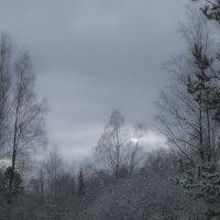 Зимние сумерки :: Aнна Зарубина