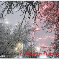 Волшебный Новый Год... :: Тамара (st.tamara)