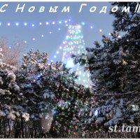 Волшебный Новый Год...3 :: Тамара (st.tamara)