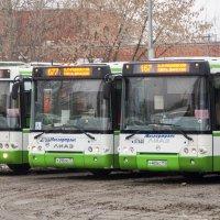 Московские автобусы :: MaksimKa -