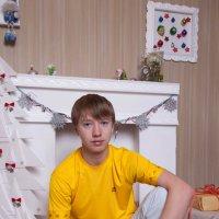 Новый 2015 год :: Sergey Efremenko