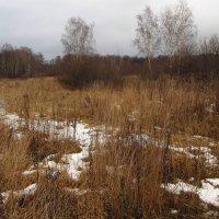 IMG_7928 - Еще в полях белеет снег :: Андрей Лукьянов