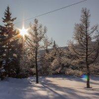зима :: Антонина