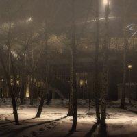 Утро в парке :: Sergey Kuznetcov