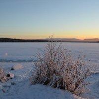 Зимнее озеро :: Ольга