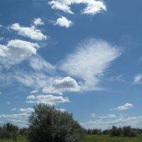 Причудливые облака. :: Владимир Сквирский