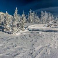Прогулка по вершине :: Sergey Oslopov