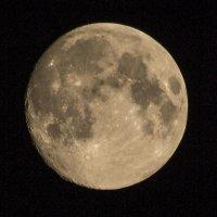 Луна с балкона :: Фима Розенберг