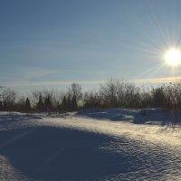 Зимнее солнышко :: Вера Андреева