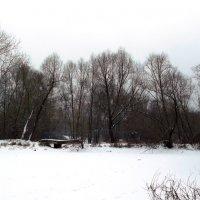 Вновь упакованны в снега пруды во парках :: Алексей Соколов