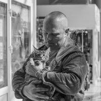 Любитель котят) :: Владимир Питерский