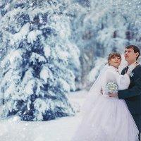 Зимняя сказка :: Екатерина Герасимова