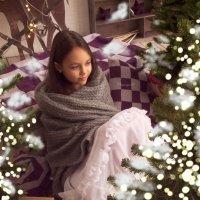 Новогодняя сказка :: Анна Журавлева