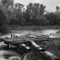 Дождливый день :: Инна Голубицкая