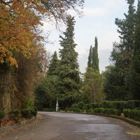 Парк Ливадийского дворца. :: Юрий Шувалов