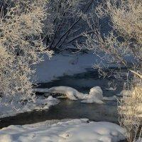 Художества зимы :: Валентин Котляров
