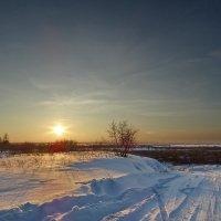 Низкое солнце :: Виктор Четошников