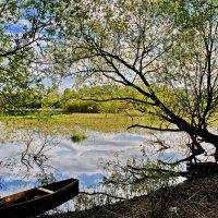 Ждет  рыбака. :: Валера39 Василевский.