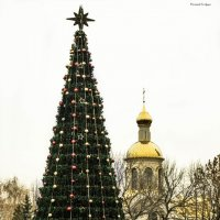 новогодняя елка :: Гай Дудка