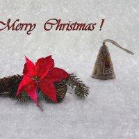 Из серии Рождественских композиций :: Ирина Приходько