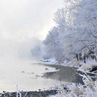 Стоит туман над Енисеем :: galina tihonova