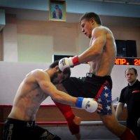 Удар с колена :: Михаил Егиазаров