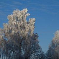 зима :: Катя Иванова