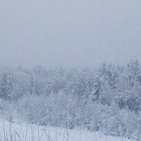 Вечерний снег :: Михаил Лобов (drakonmick)