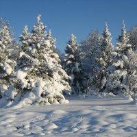 Снежная зима ! :: laana laadas