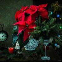 Рождественская ночь :: Ирина Приходько