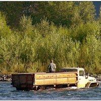 Алтайская рыбалка :: Кай-8 (Ярослав) Забелин