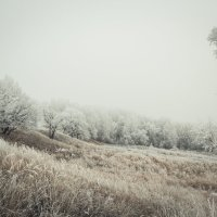 Белым бело :: Roman Korovkin