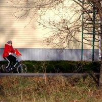 Современная бабушка :: Фотогруппа Весна.