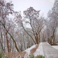 Гомельский парк :: yuri Zaitsev