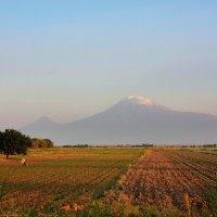 Aram Hovakyan - Armenia Mount Ararat :: Фотоконкурс Epson