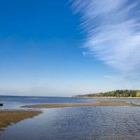 Финский залив :: Ольга Овчинникова