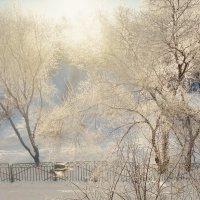Мороз и солнце... :: Игорь