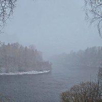 Снежок. :: Валера39 Василевский.