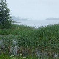 Дождливый день на Шексне :: Валерий Талашов