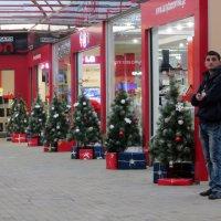 К Новому году готовы :: Наталья Джикидзе (Берёзина)