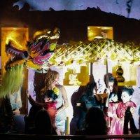 Китайский Новый год :: Тамара Войнар