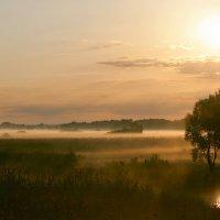 Рассвет над Сеймом :: Андрей Агешин
