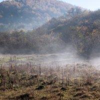 Утренний туман :: Emma Jartera