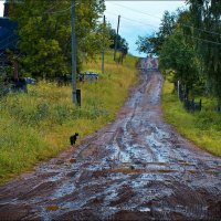 Дорога домой :: Андрей Антонов