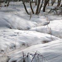 не замерзающий ручей :: Владимир Матва